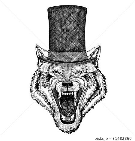 Wolf Dog Wild animal wearing cylinder top hat 31482866