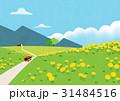 イラスト イラストレーション 挿絵のイラスト 31484516