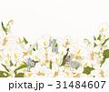 葉書 飾り 装飾のイラスト 31484607