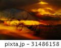 上側 アブストラクト 抽象の写真 31486158