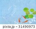 金魚 水草 魚のイラスト 31490973