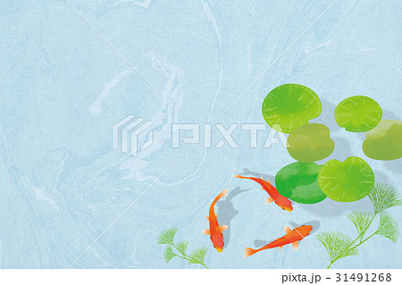 金魚 和紙・青2 31491268
