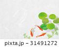 金魚 水草 魚のイラスト 31491272