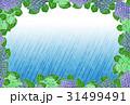 紫陽花【和紙背景・シリーズ】 31499491