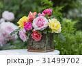 庭先のバラの花 31499702