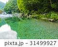 川 仁淀川 支流の写真 31499927