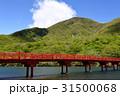 大洞赤城神社の啄木鳥橋 31500068