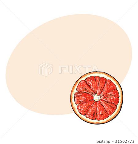 Top view round slice, half of ripe grapefruit, red 31502773