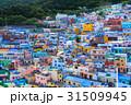 韓国 釜山の甘川洞文化村 31509945