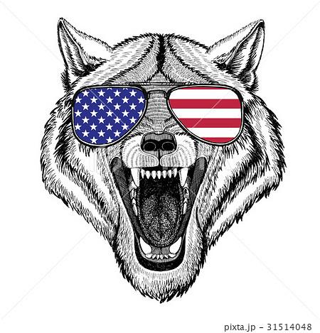 Wolf Dog Wild animal Hand drawn illustration for 31514048