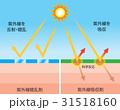 紫外線吸収剤 日焼け止め サンスクリーンのイラスト 31518160