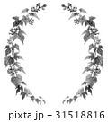 野葡萄 装飾 フレームのイラスト 31518816