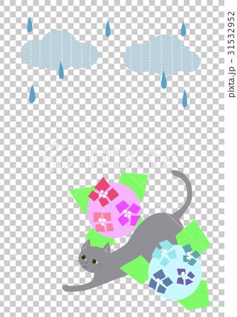雨雲と紫陽花と猫 31532952