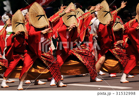 YOSAKOIソーラン祭り 31532998