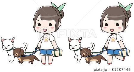 2頭の犬の散歩をする女性 31537442
