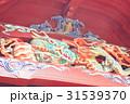 伊豆山神社 31539370