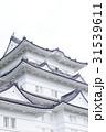 小田原城 31539611