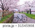 きれい 綺麗 花の写真 31545908