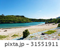 宮古島 沖縄 海の写真 31551911