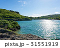 宮古島 沖縄 海の写真 31551919