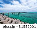 沖縄 海 海岸の写真 31552001