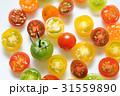 カラフルプチトマト 31559890