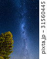 テカポ 星空 天の川の写真 31560445