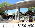 晴れ 多摩動物公園 動物園の写真 31561950
