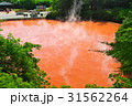 別府温泉血の池地獄 31562264