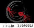 金魚 水紋 波紋のイラスト 31569558