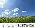 雲 自然 草原の写真 31570439