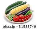 夏野菜 31583749