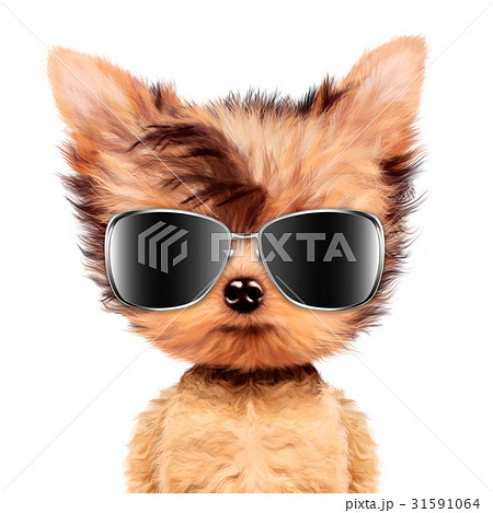 funny adorable doggy girl with aviator sunglassesのイラスト素材