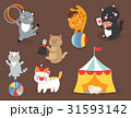 Circus cats vector cheerful illustration for kids 31593142