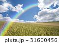 麦畑と雲と太陽と虹 31600456
