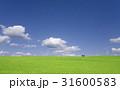 雲 家 青空のイラスト 31600583
