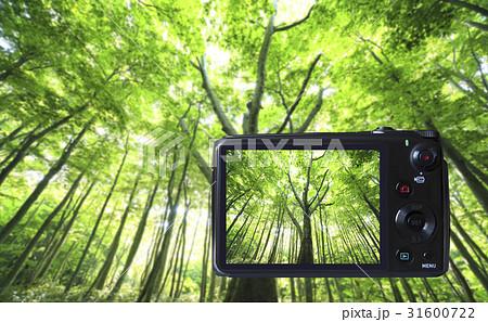 デジタルカメラの液晶モニター 31600722