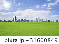 緑の草原と雲と太陽 31600849