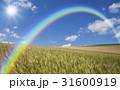 麦畑と雲と太陽と虹 31600919