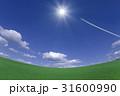草原と太陽と飛行機雲 31600990
