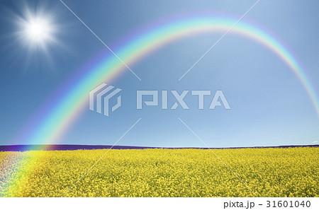 草原の赤い屋根の家と雲と太陽と虹 31601040