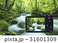 デジタルカメラ 31601309