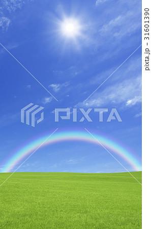 草原と虹と太陽 31601390