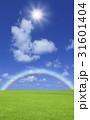 草原と虹と太陽 31601404