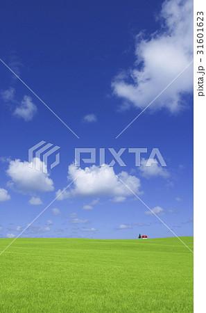 草原の赤い家 31601623