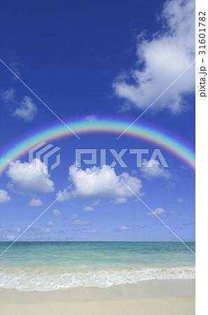 砂浜と虹 31601782