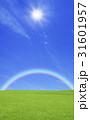 草原と虹と太陽 31601957