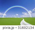 丘へ続く白い道と虹 31602134