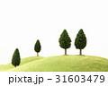 草原と木 31603479