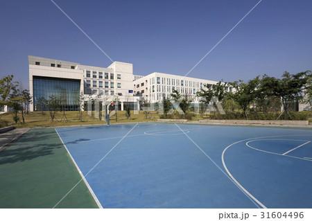 バスケットボールコート 松島 仁川 31604496